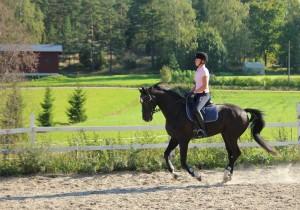 Mia on ratsuttanut Durandoa toukokuusta 2014 lähtien hyvin tuloksin.